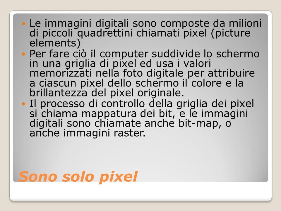 Le immagini digitali sono composte da milioni di piccoli quadrettini chiamati pixel (picture elements)