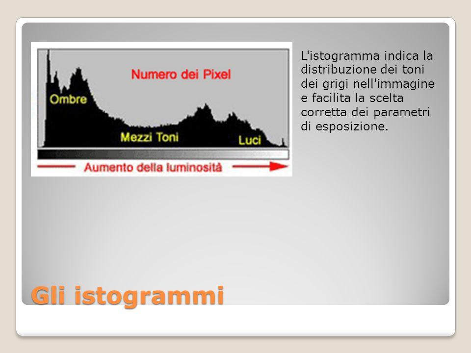 L istogramma indica la distribuzione dei toni dei grigi nell immagine e facilita la scelta corretta dei parametri di esposizione.