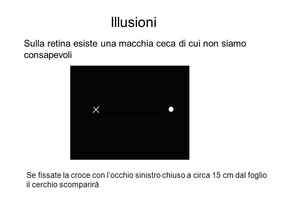 Illusioni Sulla retina esiste una macchia ceca di cui non siamo