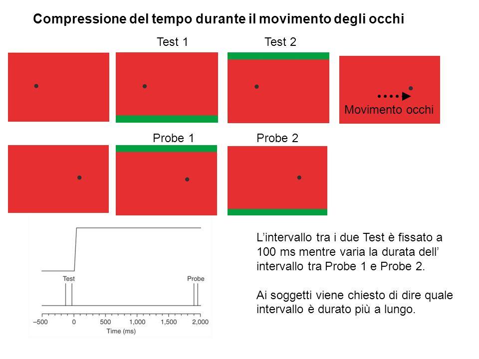 Compressione del tempo durante il movimento degli occhi