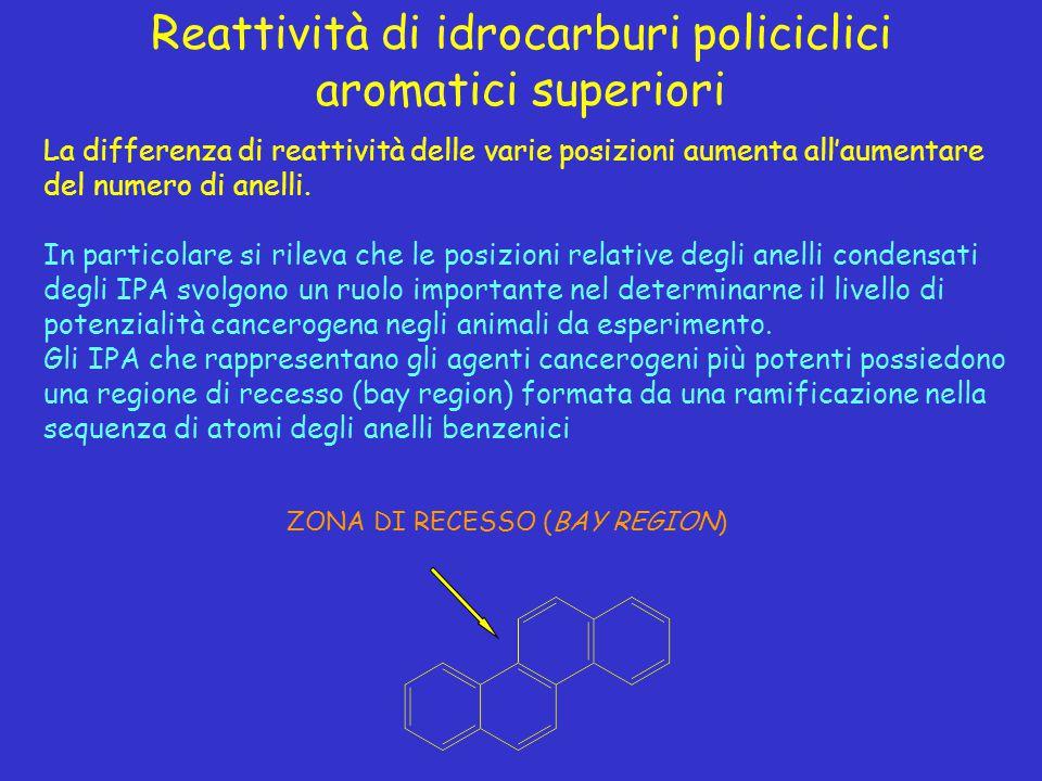 Reattività di idrocarburi policiclici aromatici superiori