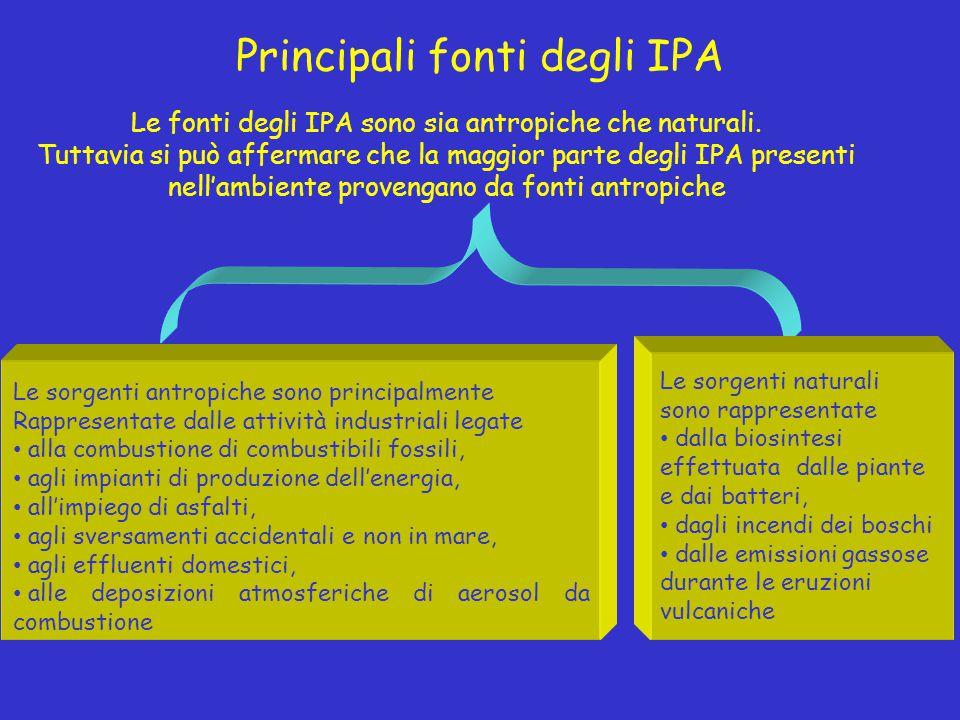 Principali fonti degli IPA
