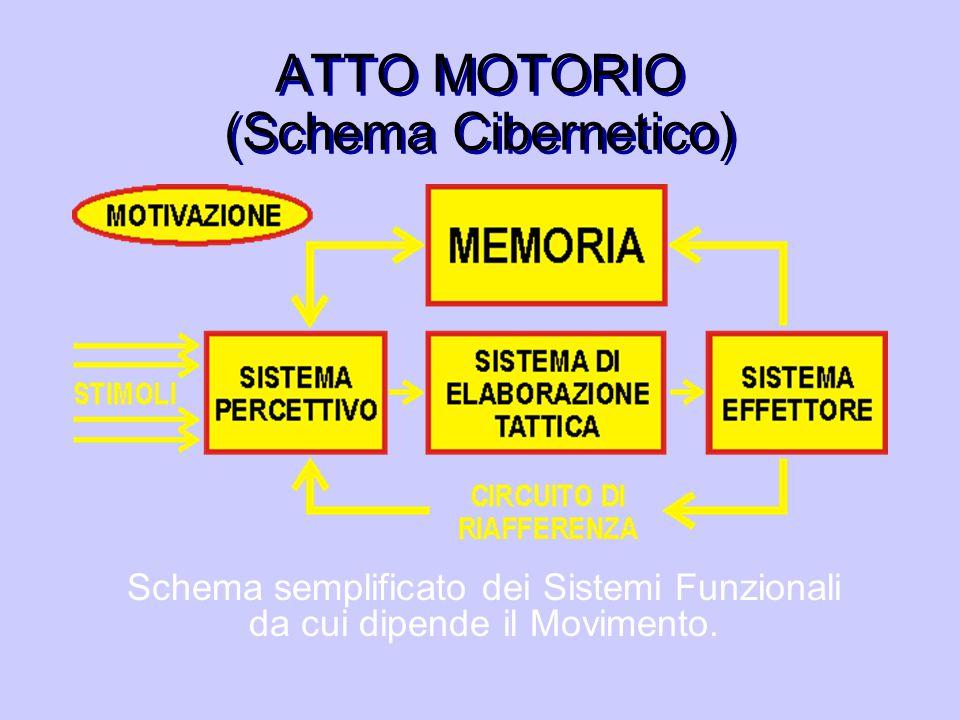 ATTO MOTORIO (Schema Cibernetico)