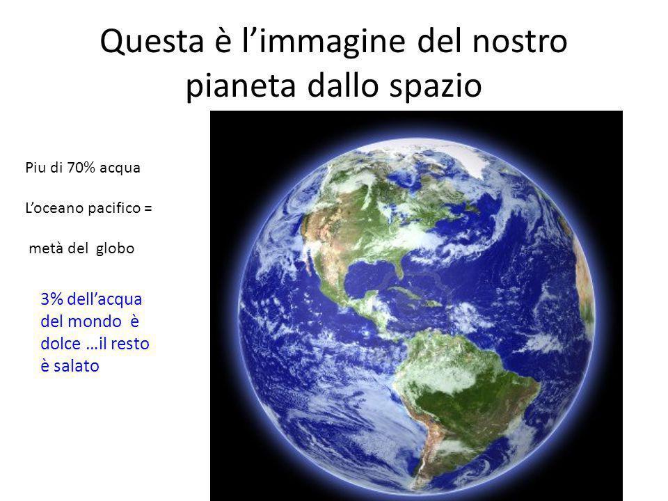 Questa è l'immagine del nostro pianeta dallo spazio