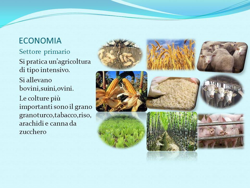 ECONOMIA Settore primario Si pratica un'agricoltura di tipo intensivo.