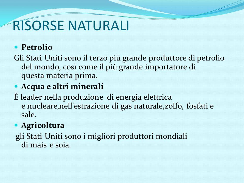 RISORSE NATURALI Petrolio