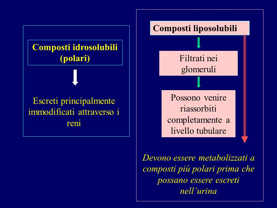 Composti idrosolubili (polari)