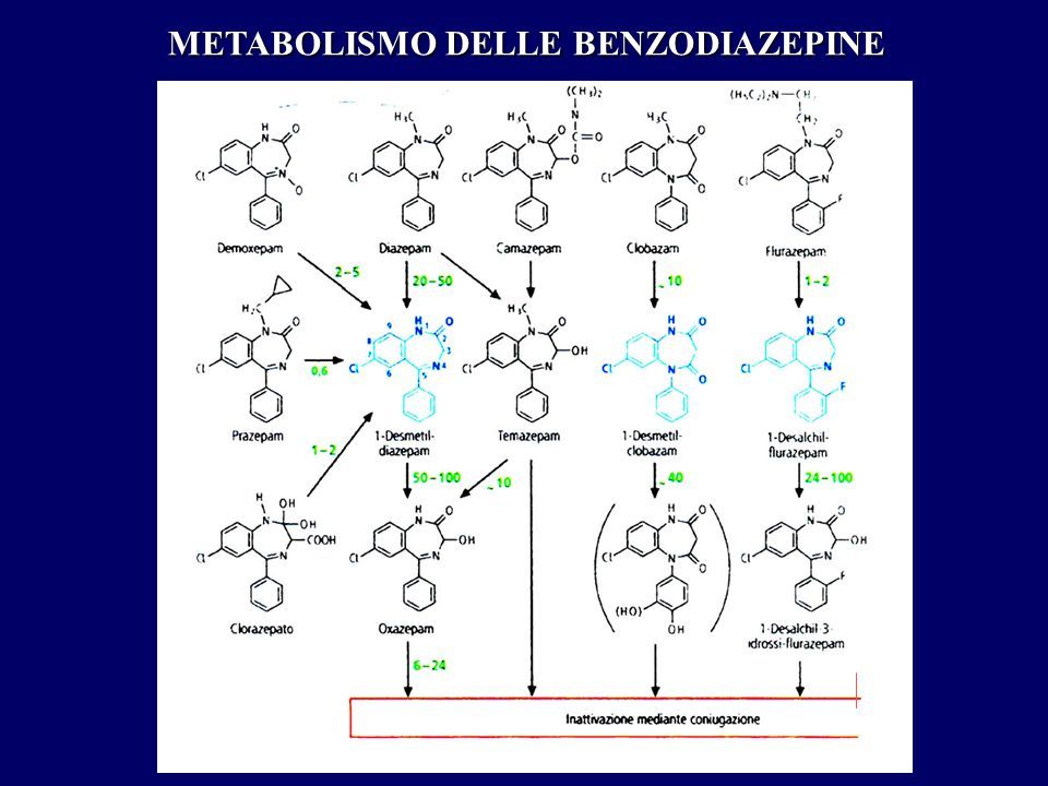 METABOLISMO DELLE BENZODIAZEPINE