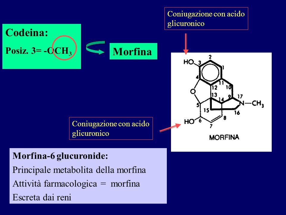 Codeina: Morfina Posiz. 3= -OCH3 Morfina-6 glucuronide:
