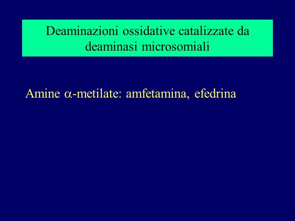 Deaminazioni ossidative catalizzate da deaminasi microsomiali