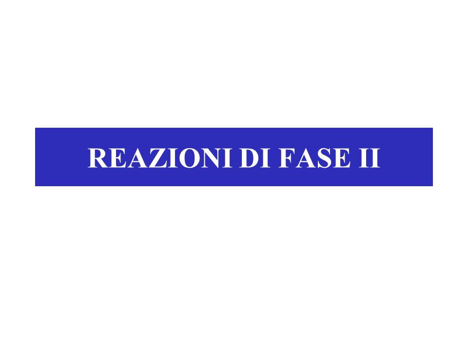 REAZIONI DI FASE II