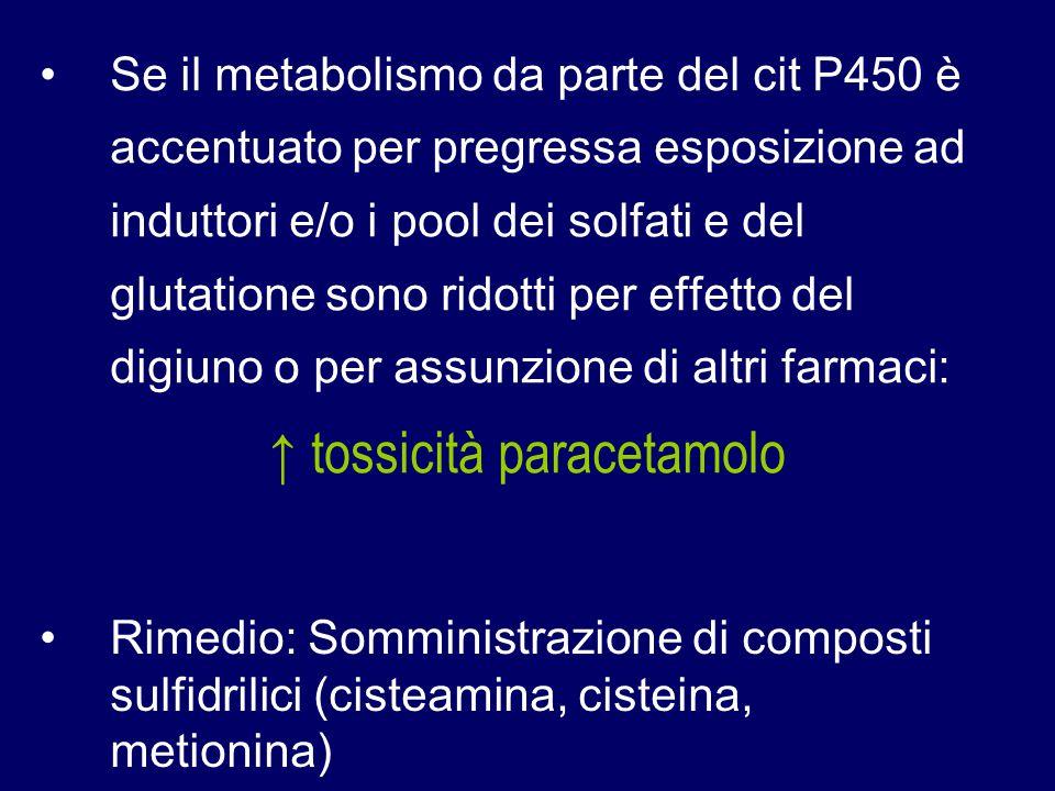 ↑ tossicità paracetamolo