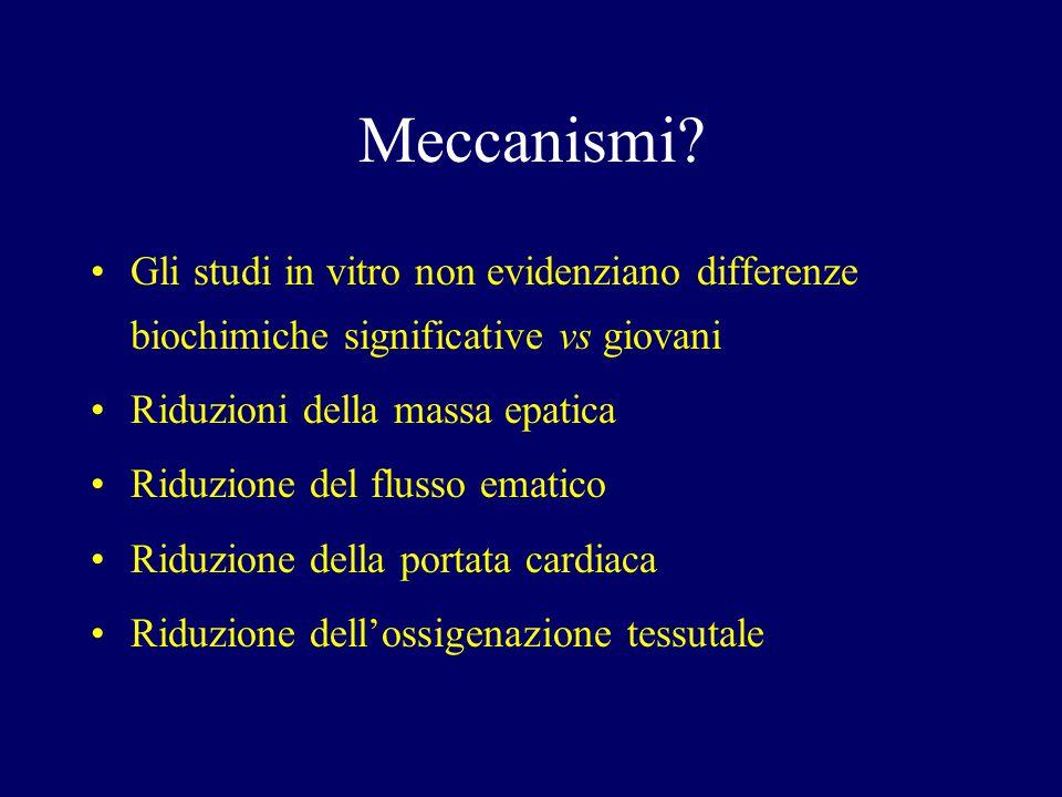 Meccanismi Gli studi in vitro non evidenziano differenze biochimiche significative vs giovani. Riduzioni della massa epatica.