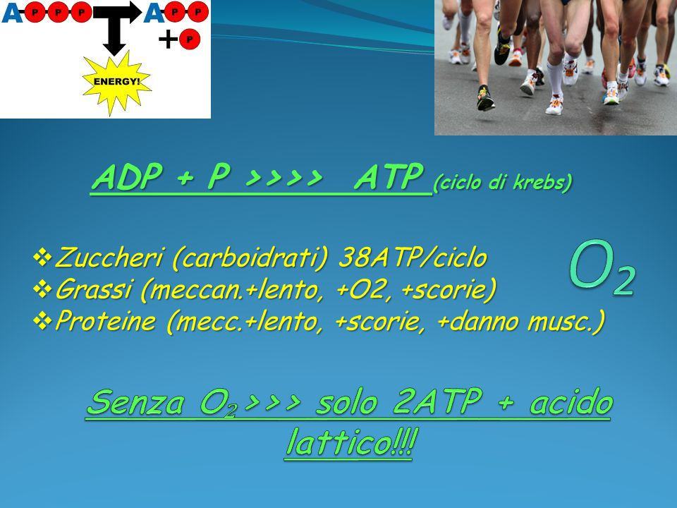Senza O₂>>> solo 2ATP + acido lattico!!!