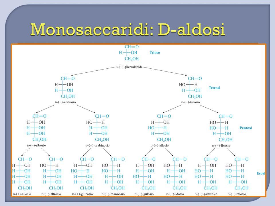 Monosaccaridi: D-aldosi