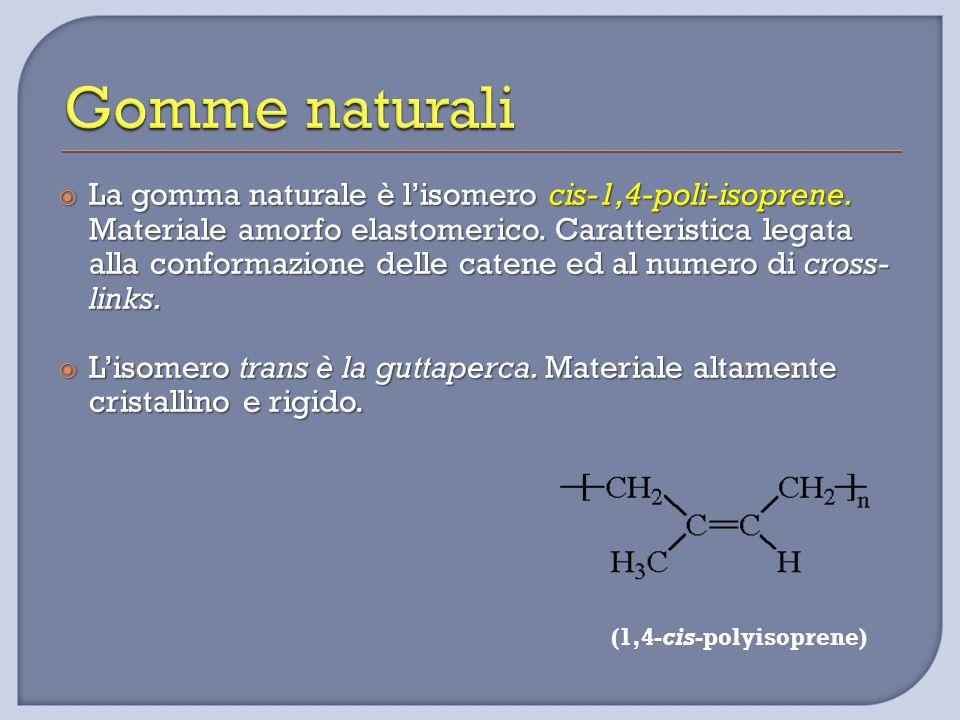 Gomme naturali La gomma naturale è l'isomero cis-1,4-poli-isoprene. Materiale amorfo elastomerico. Caratteristica legata.