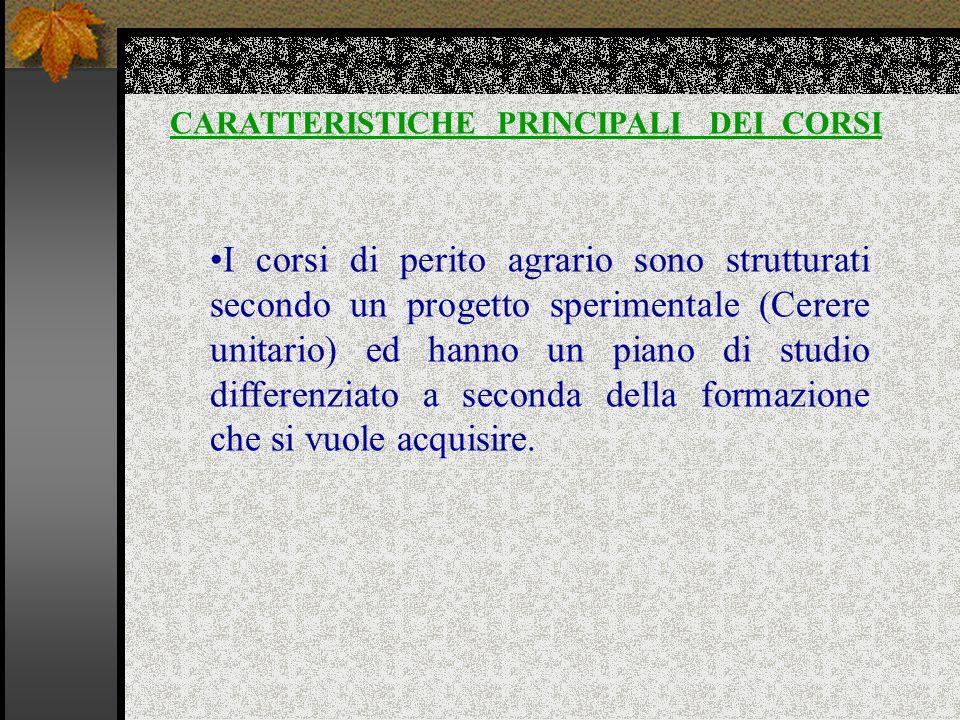 CARATTERISTICHE PRINCIPALI DEI CORSI