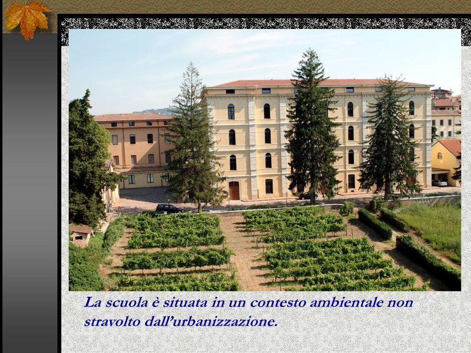 La scuola è situata in un contesto ambientale non stravolto dall'urbanizzazione.