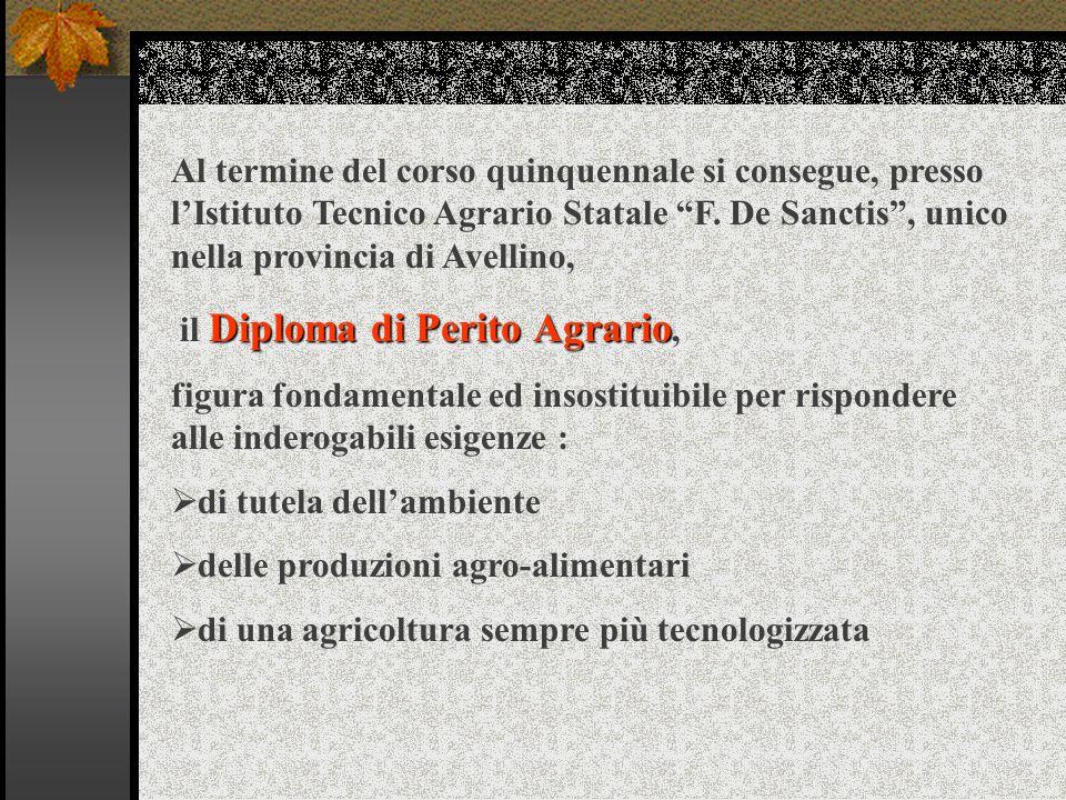 Al termine del corso quinquennale si consegue, presso l'Istituto Tecnico Agrario Statale F. De Sanctis , unico nella provincia di Avellino,
