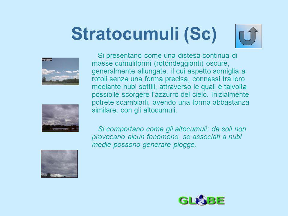 Stratocumuli (Sc)