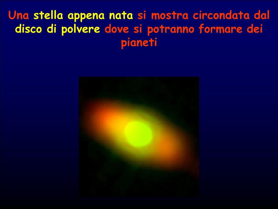 Una stella appena nata si mostra circondata dal disco di polvere dove si potranno formare dei pianeti