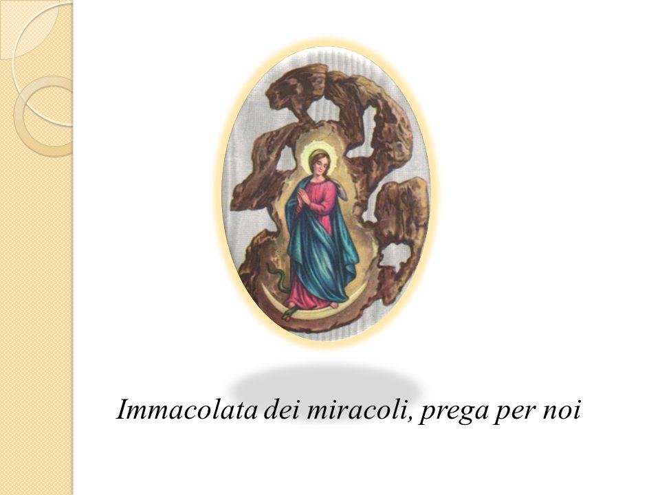 Immacolata dei miracoli, prega per noi