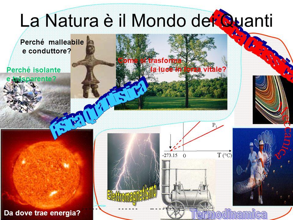 La Natura è il Mondo dei Quanti