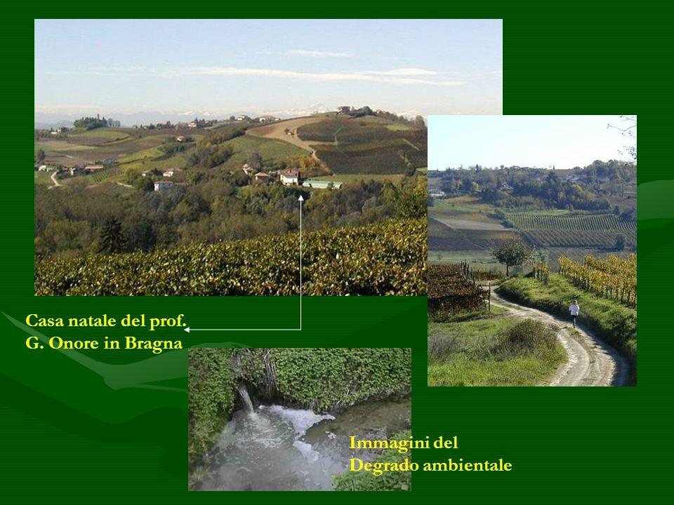Casa natale del prof. G. Onore in Bragna