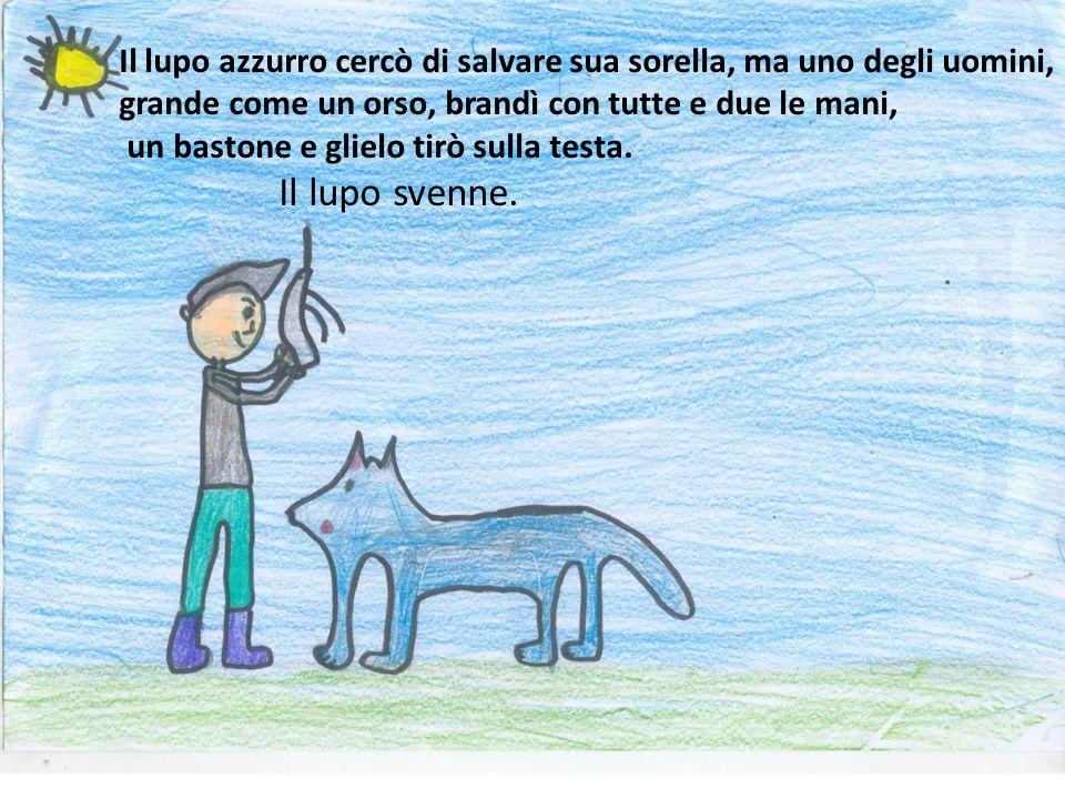 Il lupo azzurro cercò di salvare sua sorella, ma uno degli uomini,