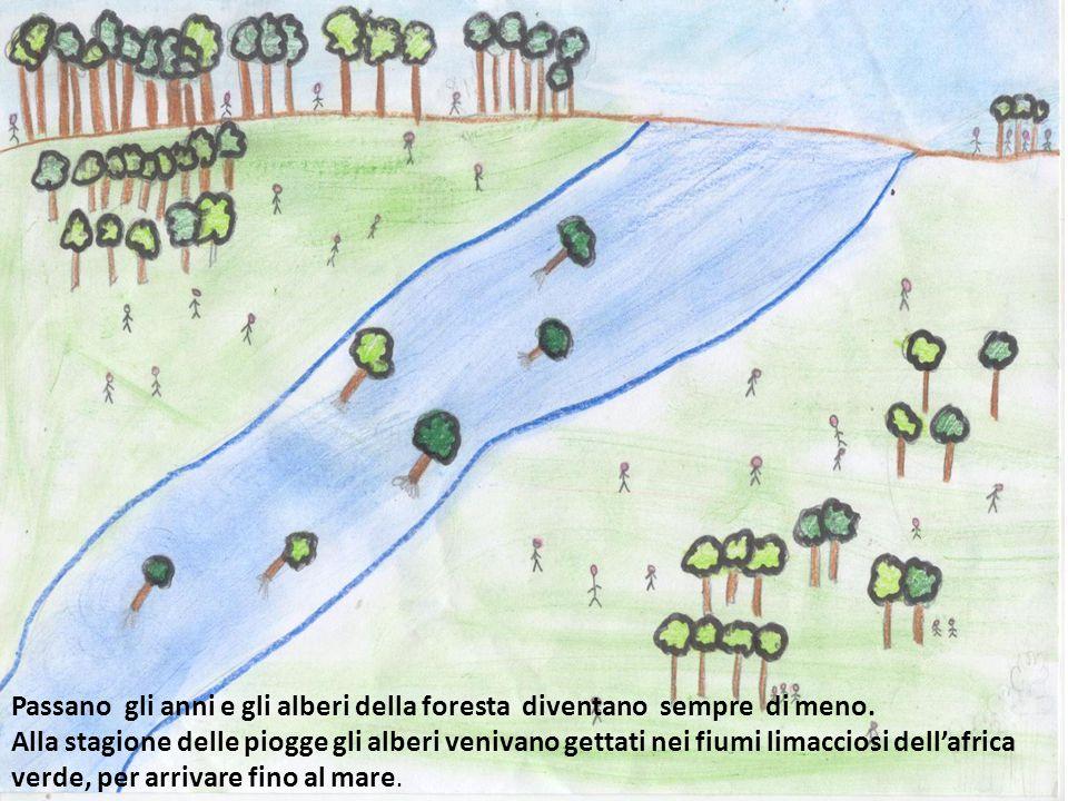 Passano gli anni e gli alberi della foresta diventano sempre di meno.