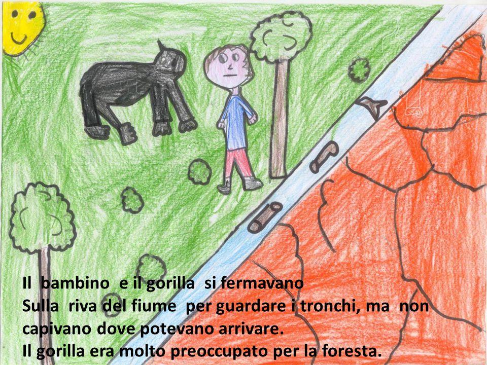 Il bambino e il gorilla si fermavano