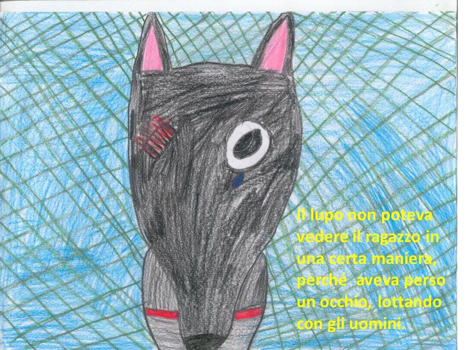 Il lupo non poteva vedere il ragazzo in una certa maniera, perché aveva perso un occhio, lottando con gli uomini.