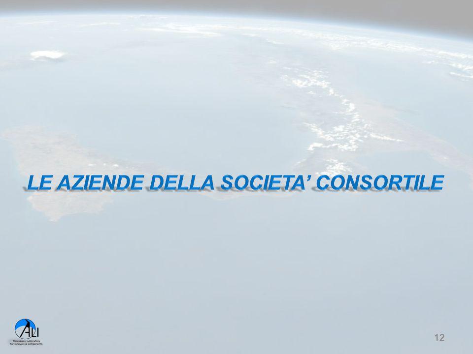 LE AZIENDE DELLA SOCIETA' CONSORTILE