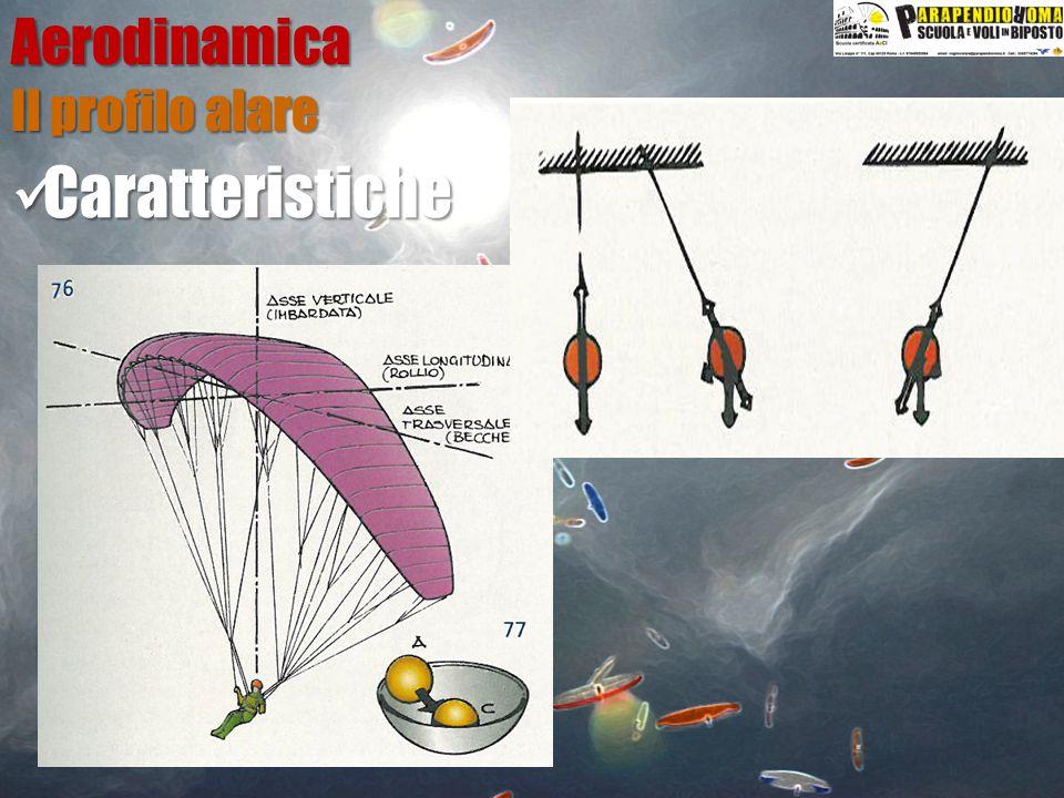 Aerodinamica Il profilo alare Caratteristiche