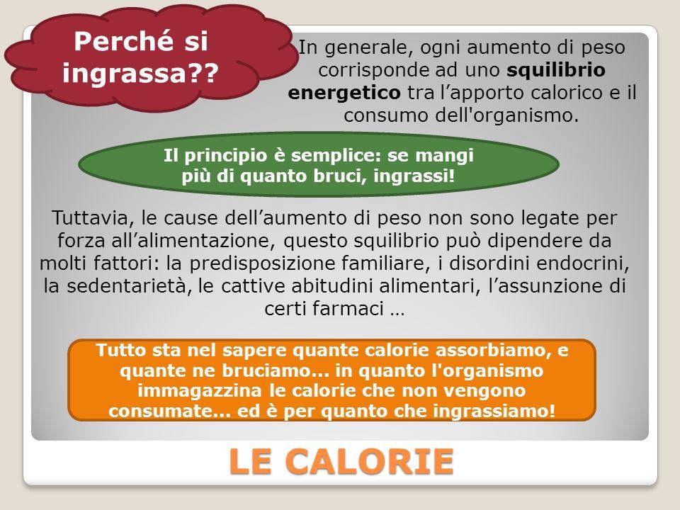 Il principio è semplice: se mangi più di quanto bruci, ingrassi!