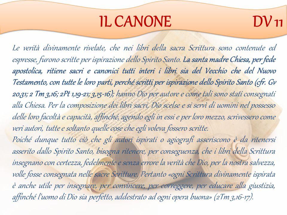 IL CANONE DV 11