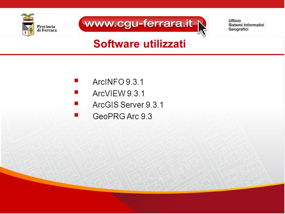 Software utilizzati ArcINFO 9.3.1 ArcVIEW 9.3.1 ArcGIS Server 9.3.1