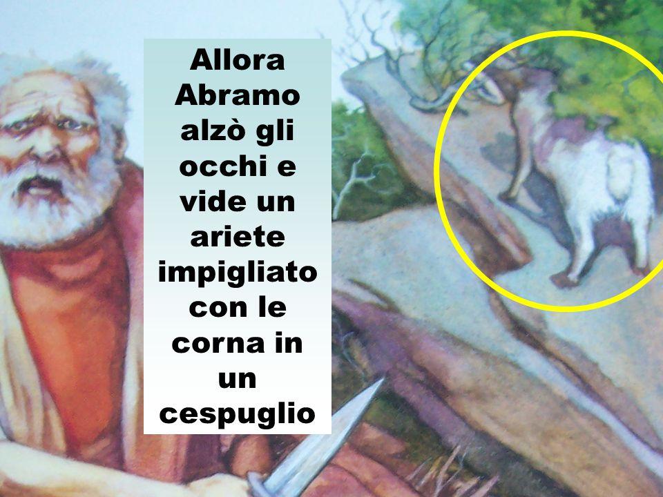 Allora Abramo alzò gli occhi e vide un ariete impigliato con le corna in un cespuglio