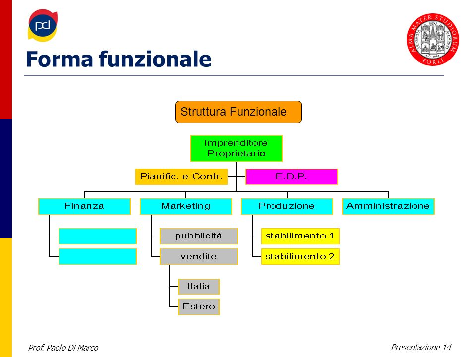 Forma funzionale Struttura Funzionale