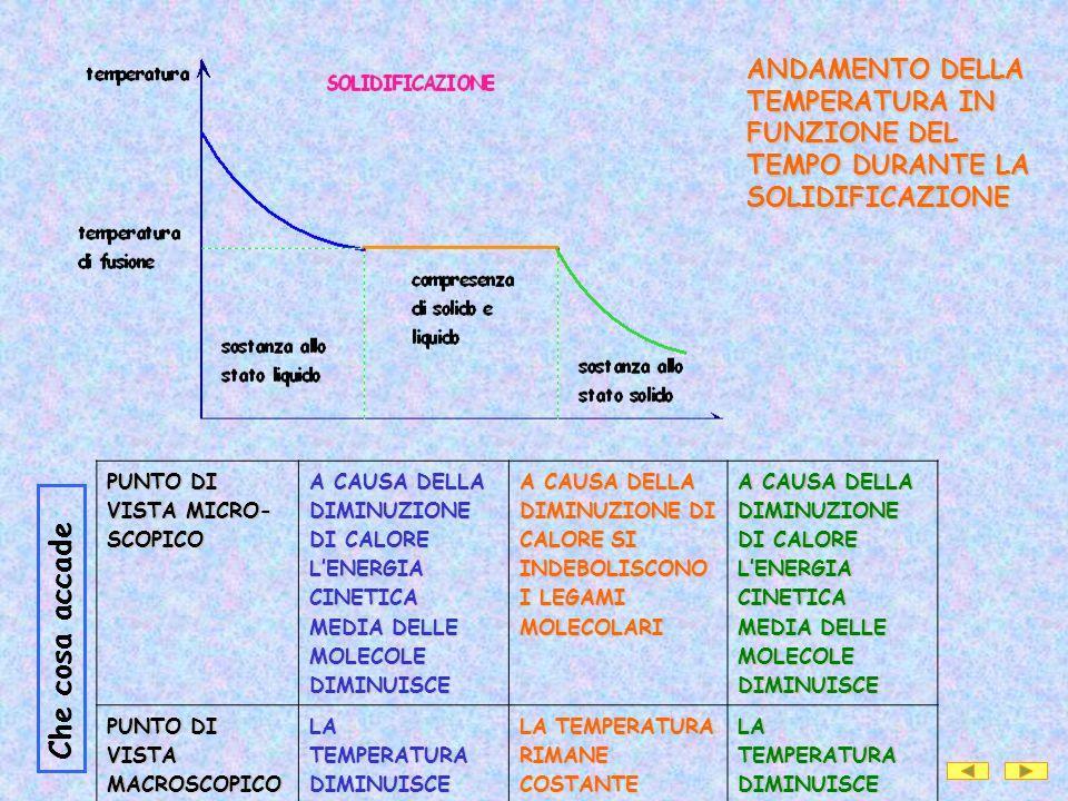 ANDAMENTO DELLA TEMPERATURA IN FUNZIONE DEL TEMPO DURANTE LA SOLIDIFICAZIONE