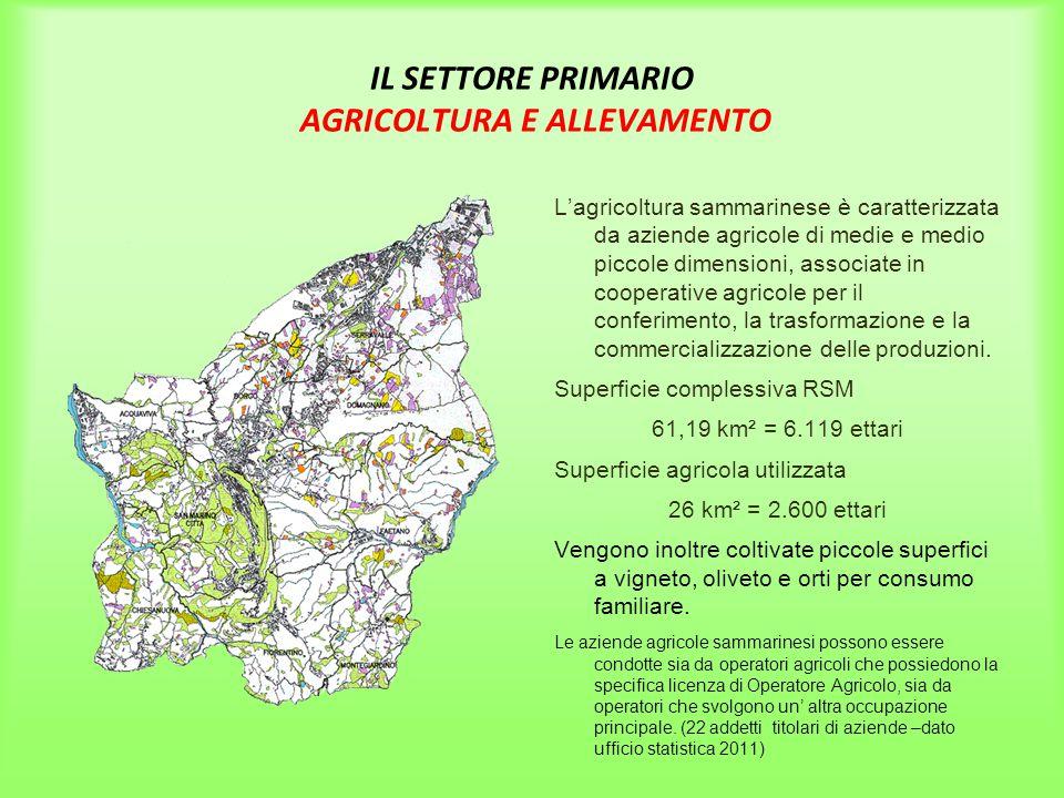 IL SETTORE PRIMARIO AGRICOLTURA E ALLEVAMENTO
