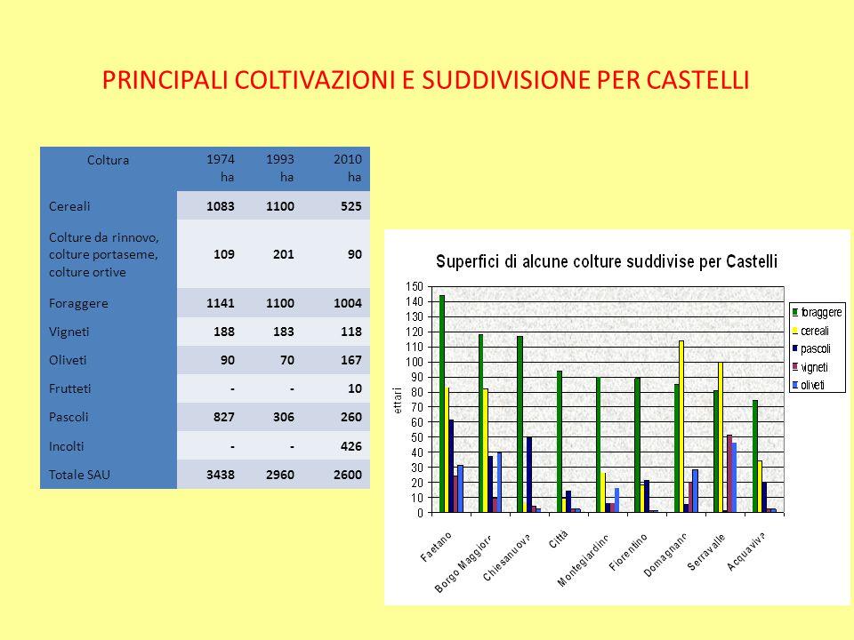 PRINCIPALI COLTIVAZIONI E SUDDIVISIONE PER CASTELLI
