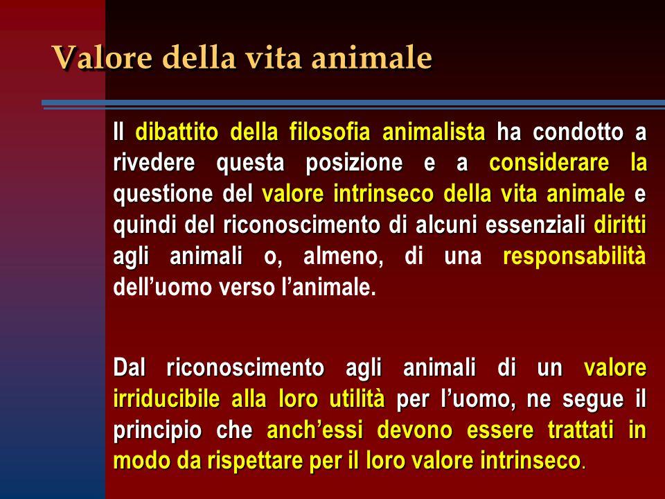 Valore della vita animale