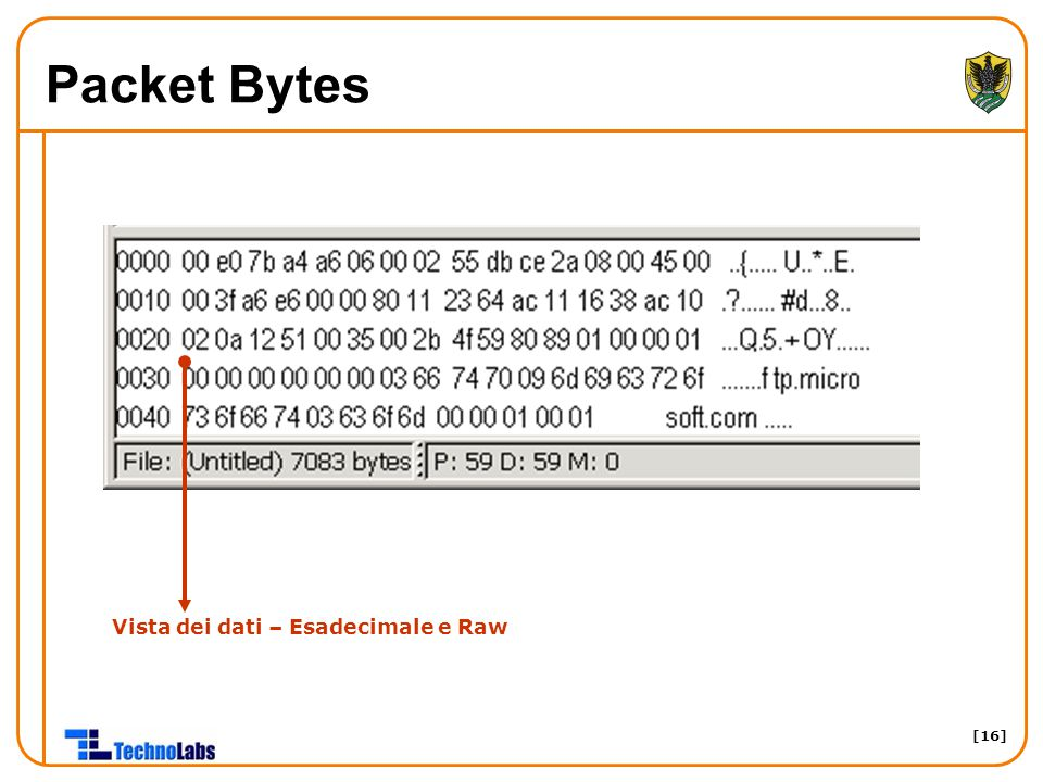 Packet Bytes Vista dei dati – Esadecimale e Raw