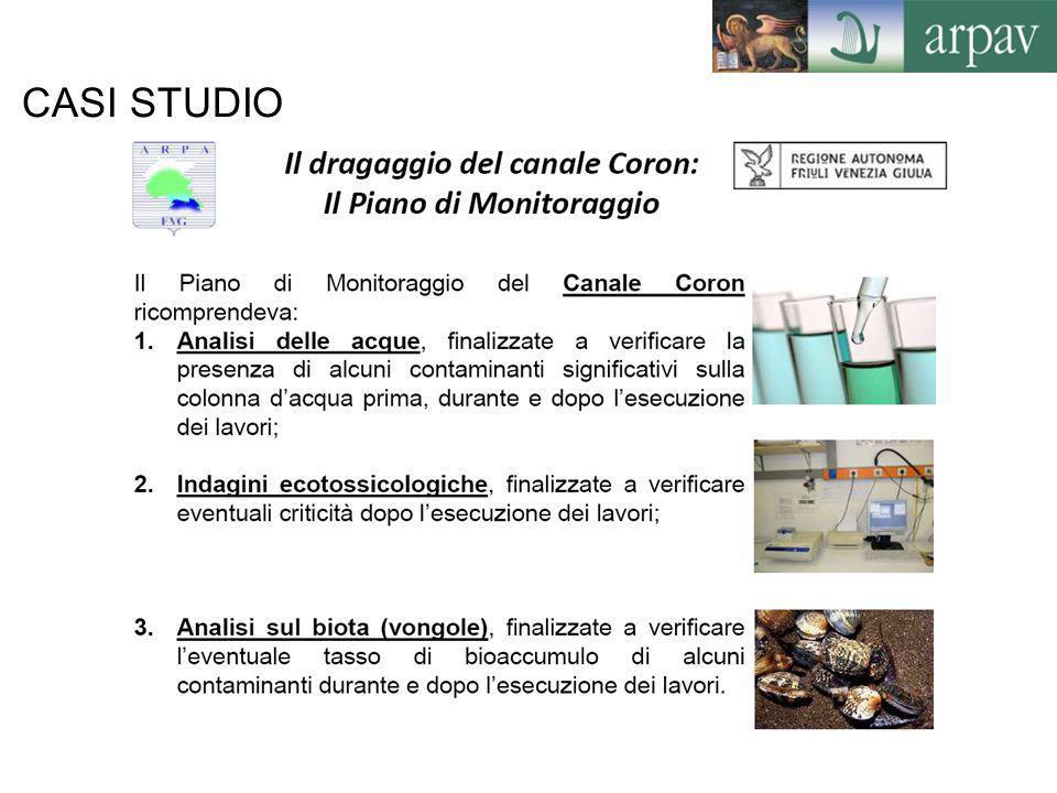 CASI STUDIO