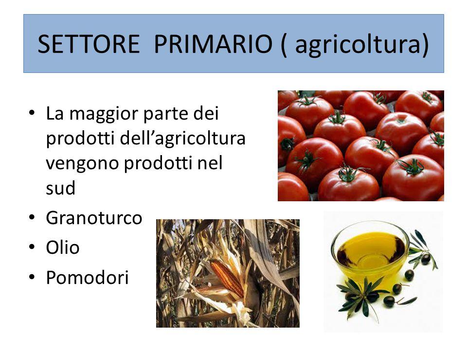 SETTORE PRIMARIO ( agricoltura)