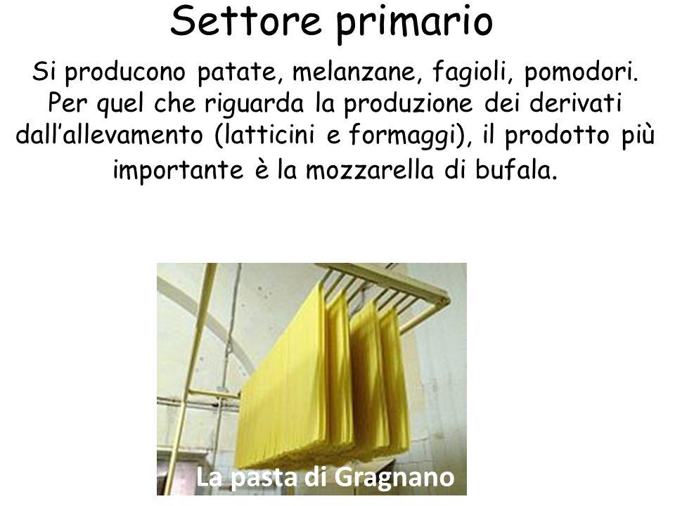 Settore primario La pasta di Gragnano
