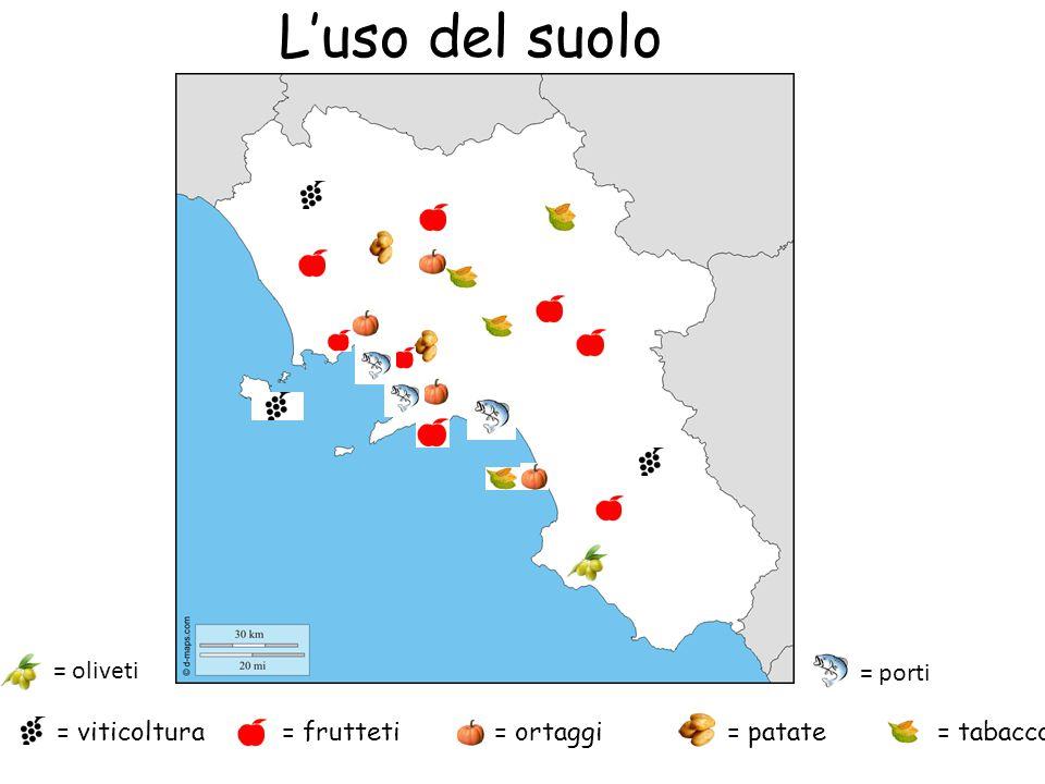 L'uso del suolo = oliveti = porti