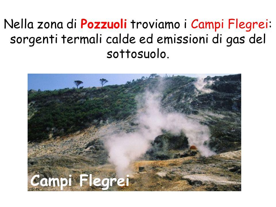 Nella zona di Pozzuoli troviamo i Campi Flegrei: sorgenti termali calde ed emissioni di gas del sottosuolo.