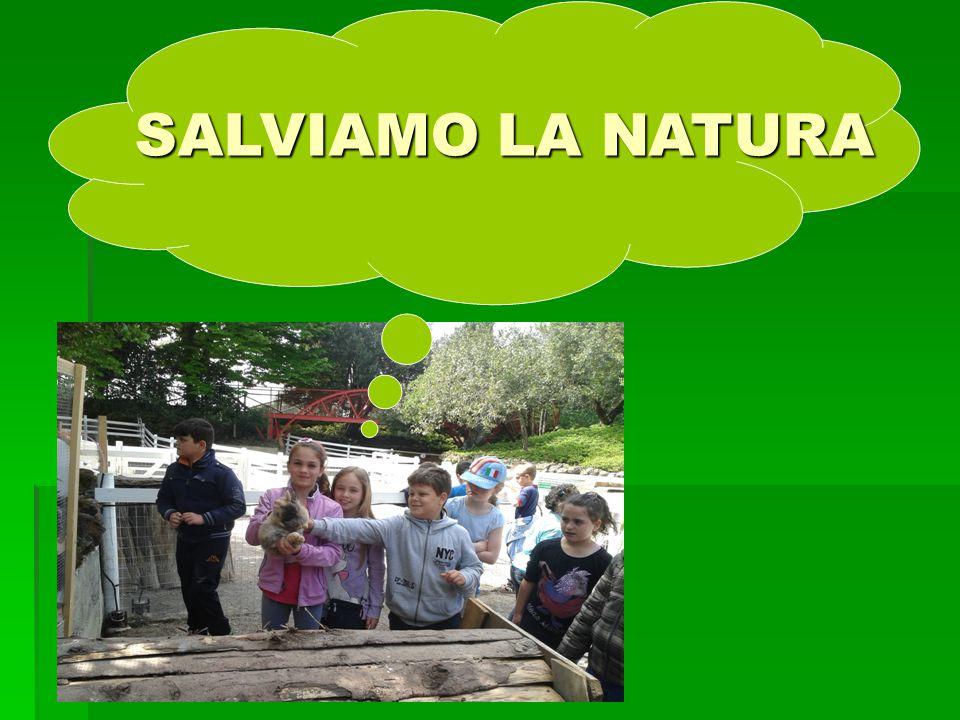 SALVIAMO LA NATURA